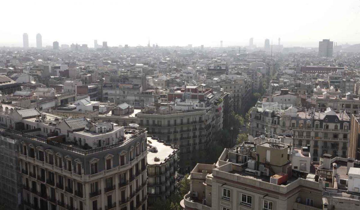 Ecología, sostenibilidad y ciudad